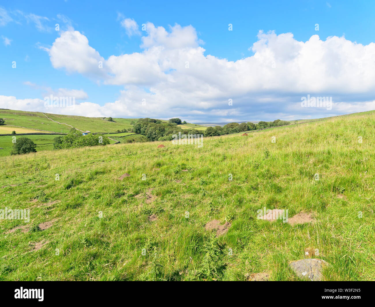 Looking out over the hills and valleys of the Yorkshire Dales near Stainforth. - Stock Image