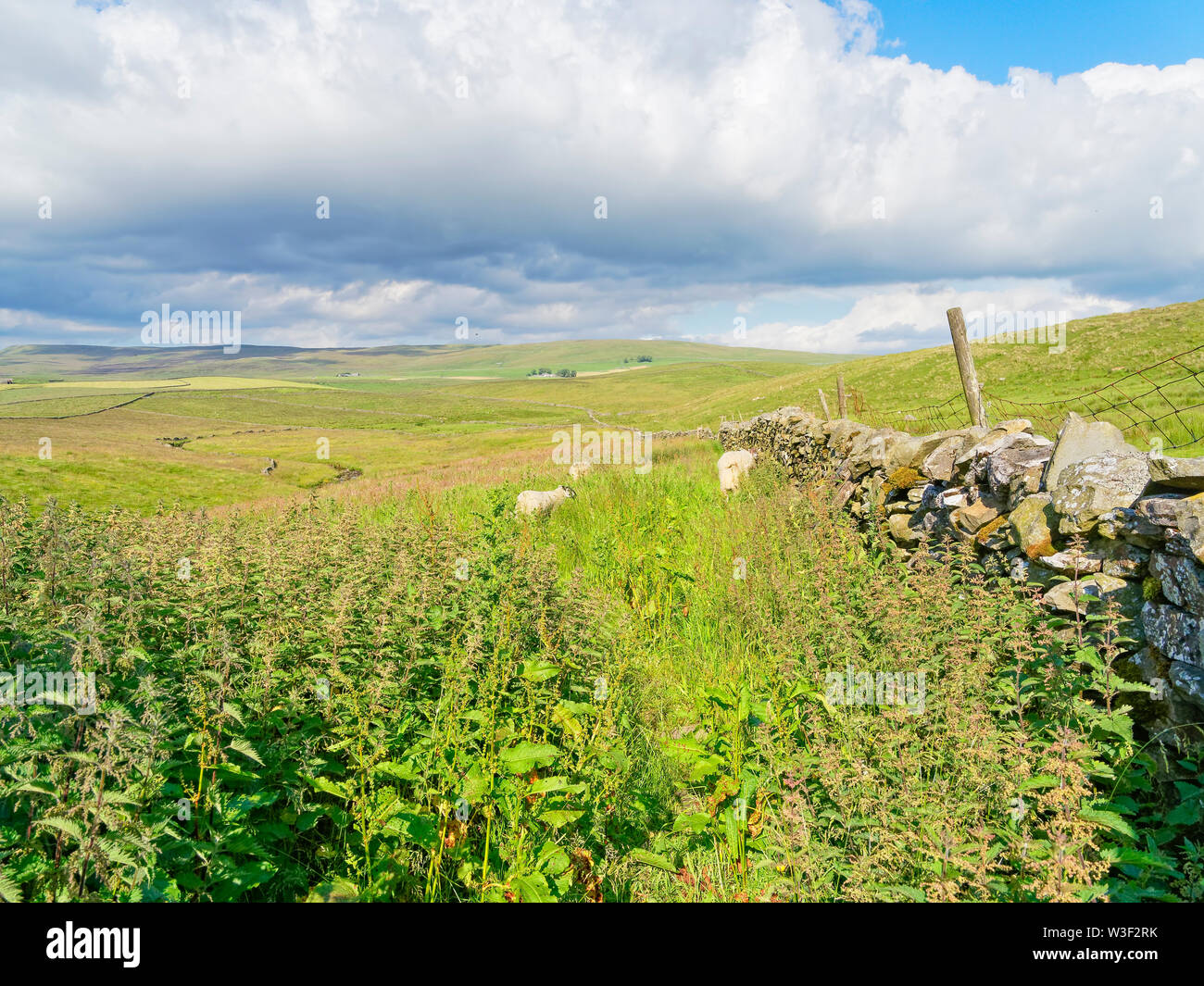 Dark clouds begin to gather over the Yorkshire Dales - Stock Image