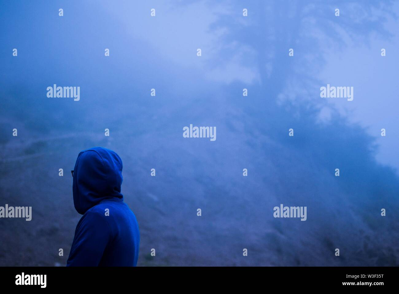 A person wearing a blue hoodie standing in a forest covered in fog - Stock Image