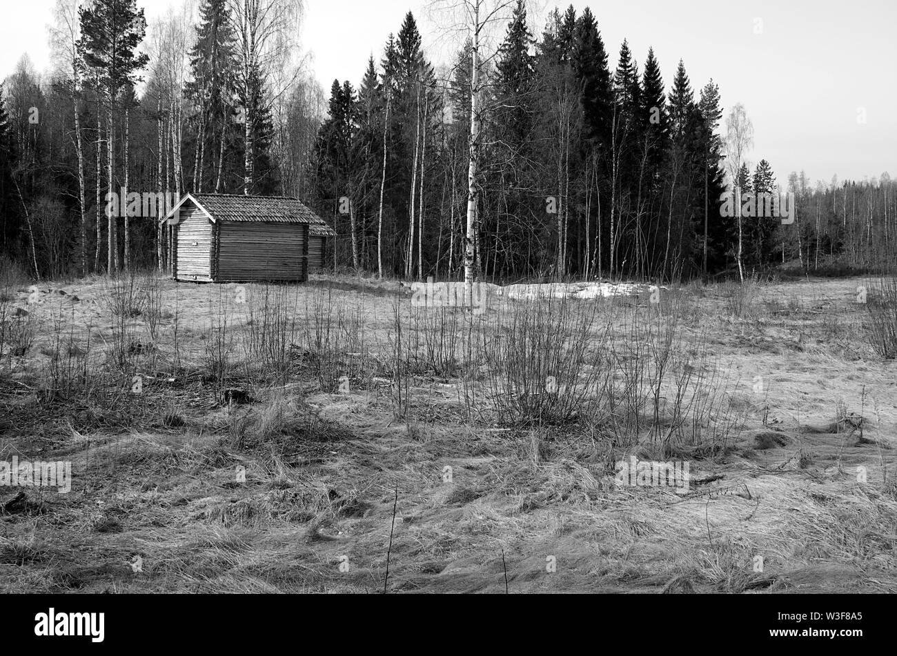 An old small farm house on a field near a forest in black and white. Stock Photo