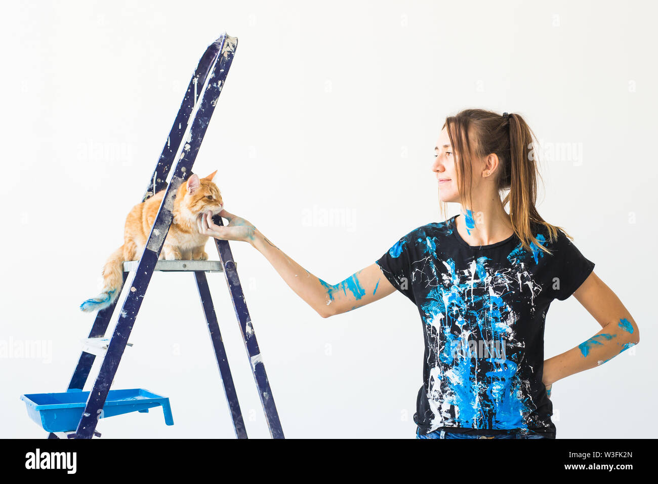 Young woman painter, designer and worker paints the wall. The cat sits next on the ladder and looks at the work - Stock Image