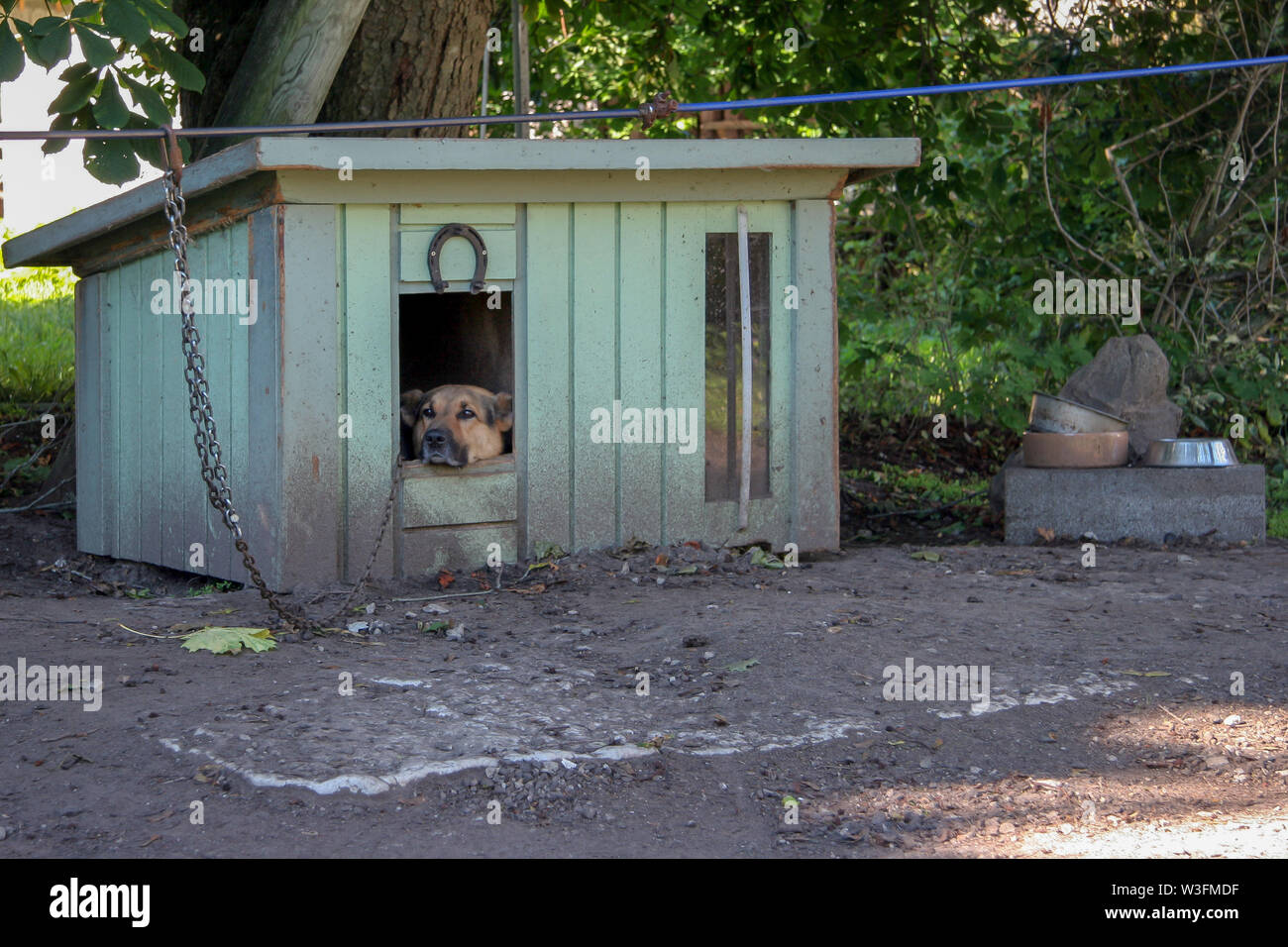 A sad shepherd dog sits in a booth on a chain and looks away. Horseshoe nailed on the booth. The booth is green and dirty. Nearby are bowls for food. - Stock Image