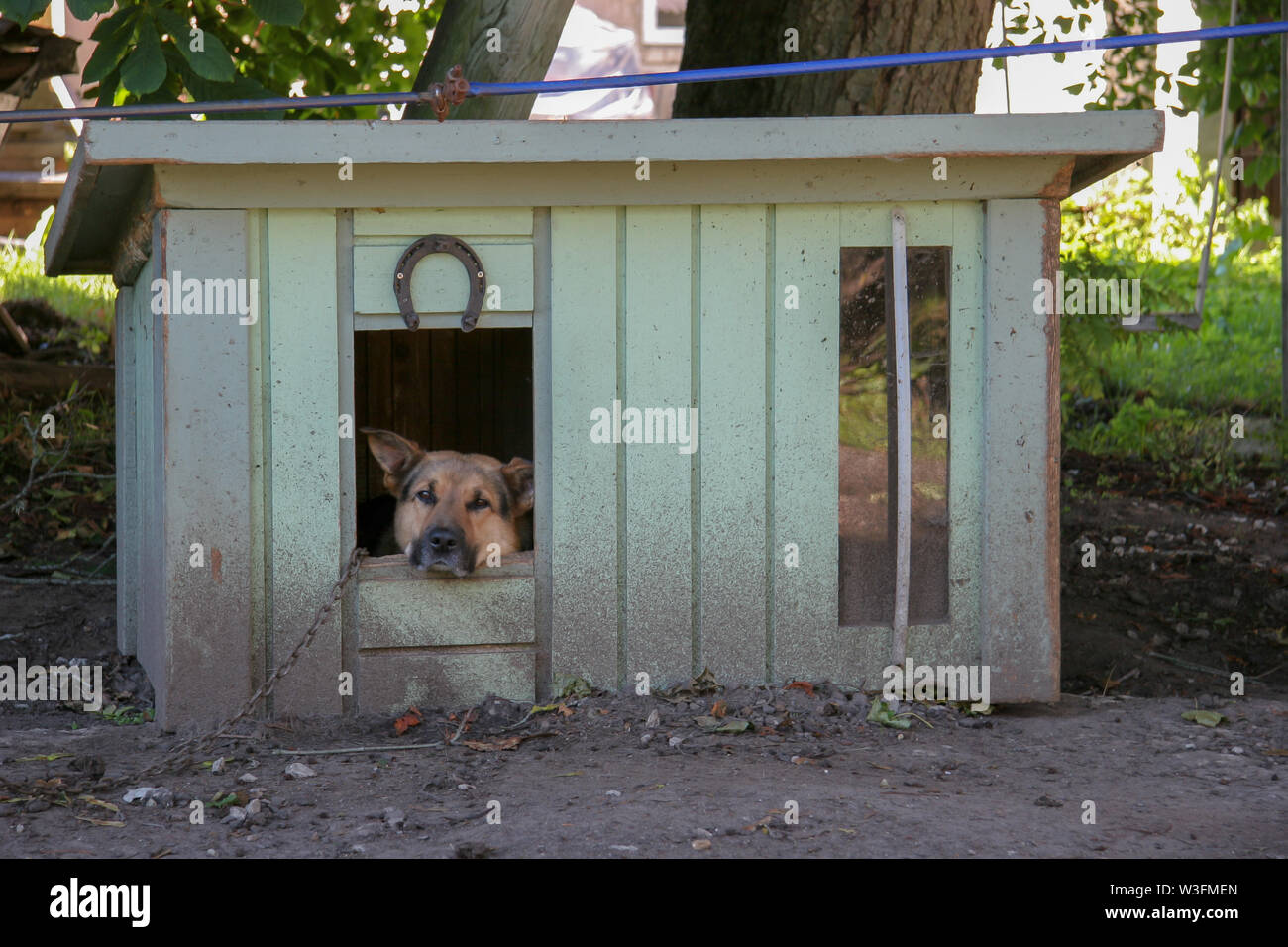 A sad shepherd dog sits in a booth on a chain and looks into the camera. Close-up. Horseshoe nailed on the booth. The booth is green and dirty. - Stock Image