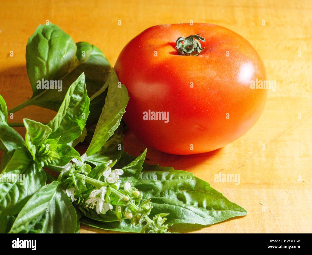 Tomato and basil on butcher block surface. - Stock Image