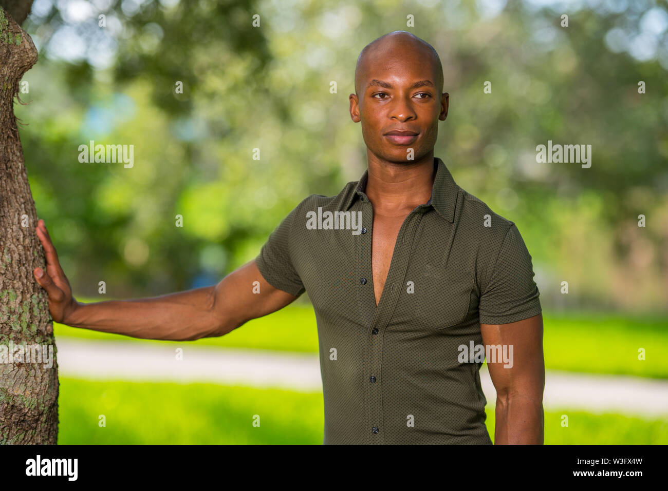 Handsome young African American man posing with hand on tree in the park. Mans shirt is unbuttoned to show chest as man glances away from camera - Stock Image