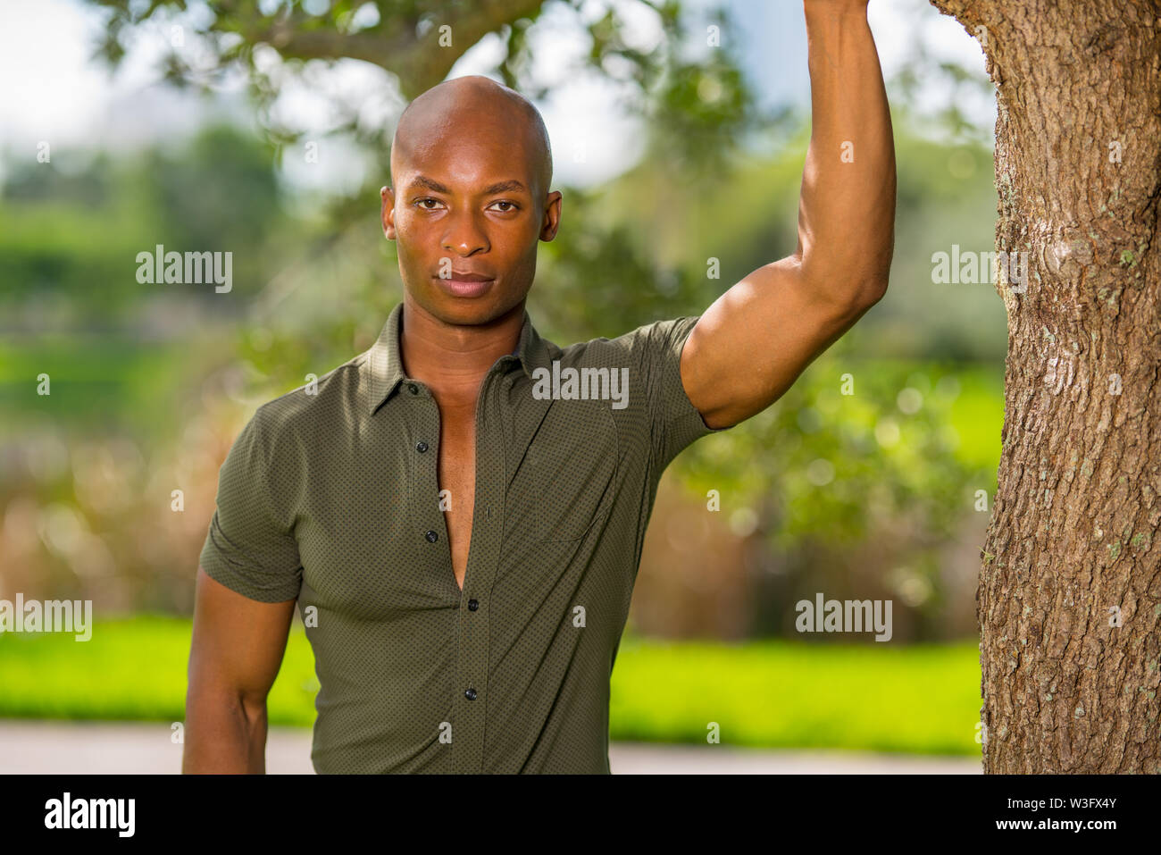 Handsome young African American man posing with hand on tree in the park. Mans shirt is unbuttoned to show chest as man lookg at camera - Stock Image