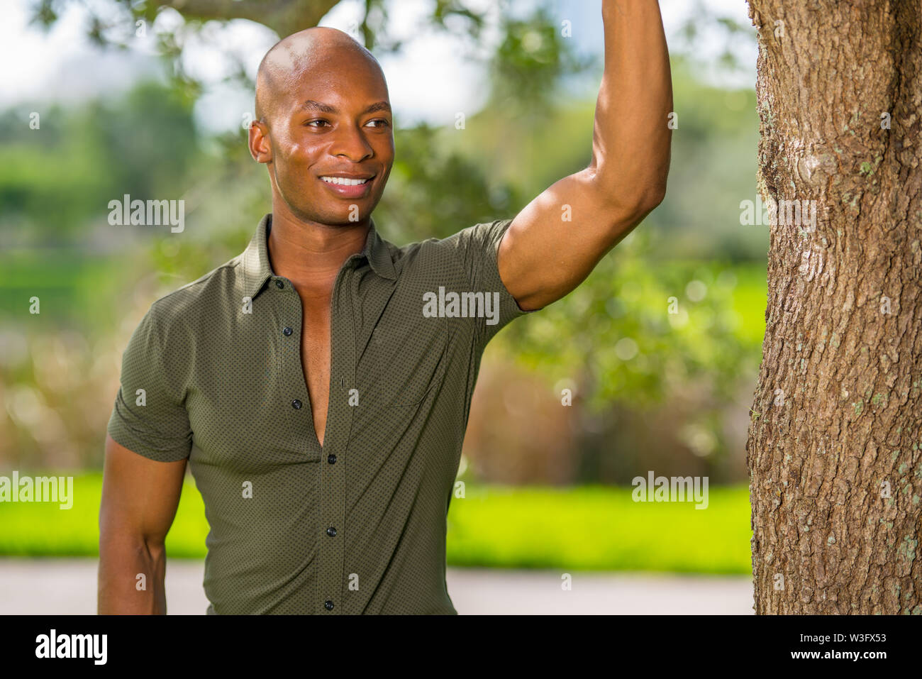 Handsome young African American man posing with hand on tree in the park. Person is smiling off camera - Stock Image