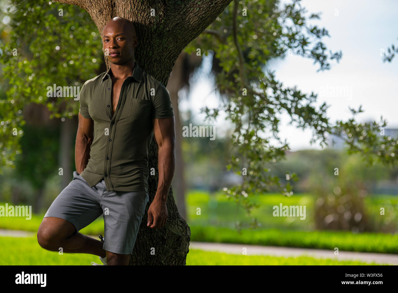Handsome relaxed man leaning on a tree in the park. African American model wearing a tight shirt showing off muscles - Stock Image