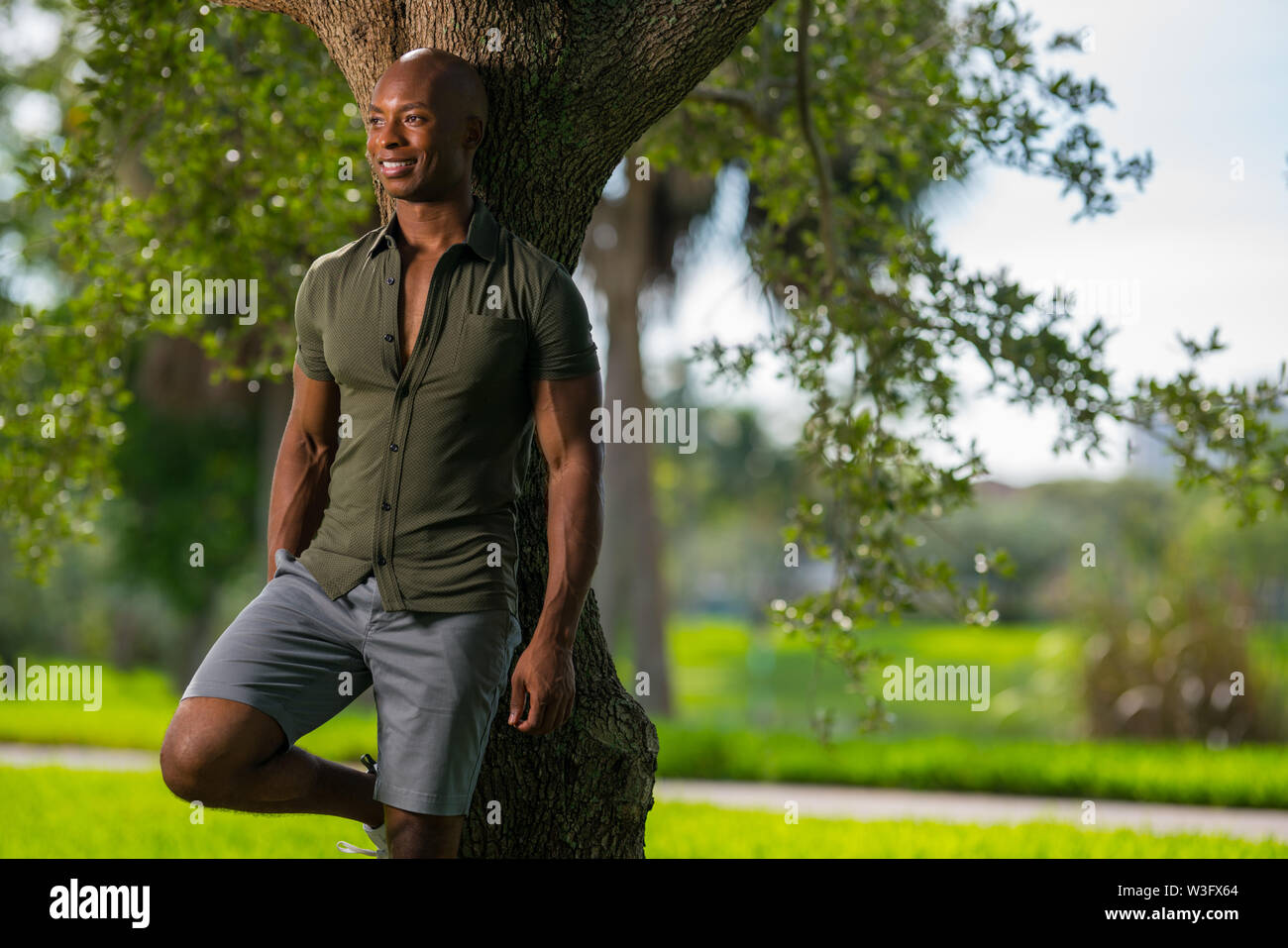 Handsome African American model leaning on a tree in the park lit with flash from off camera - Stock Image