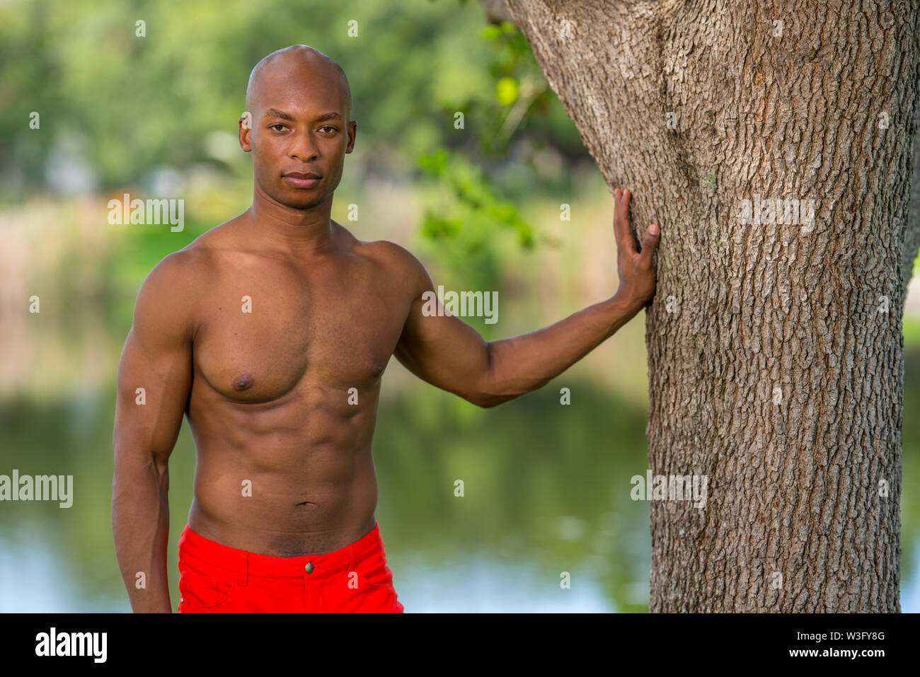 Image of an attractive fitness model with hand on tree in the park. Image lit with flash and natural light mix - Stock Image