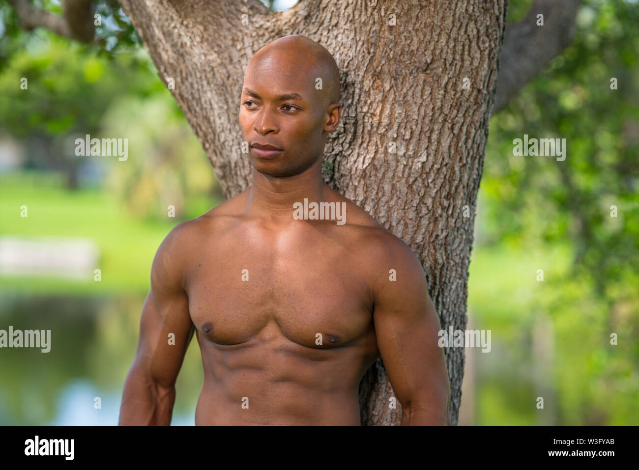 Portrait of a shirtless fitness model posing by a tree in the park. Image lit with off camera flash and natural light - Stock Image
