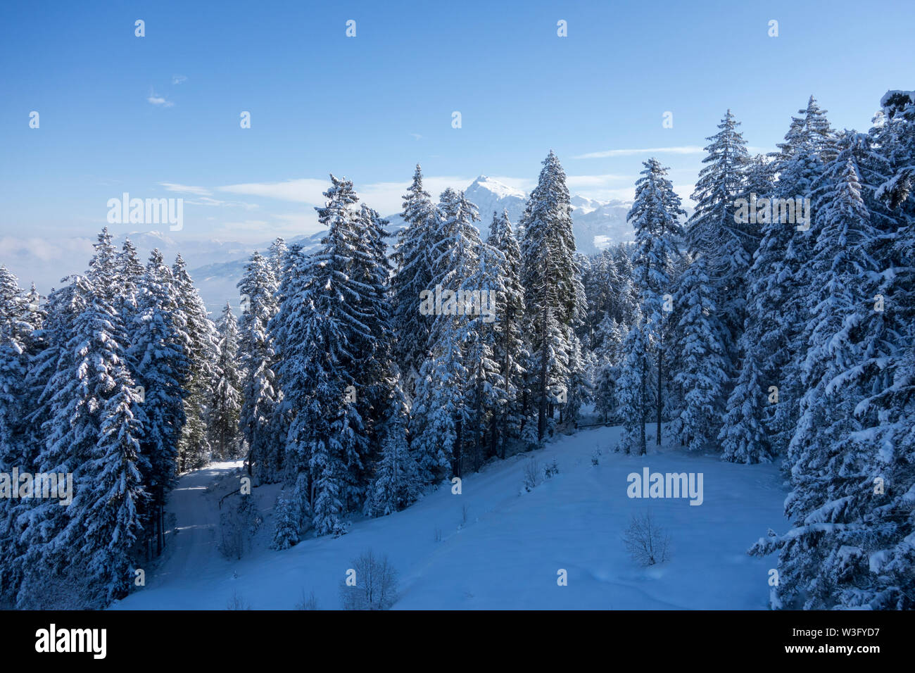 Winter in the mountains of Tirol, Austria - Stock Image