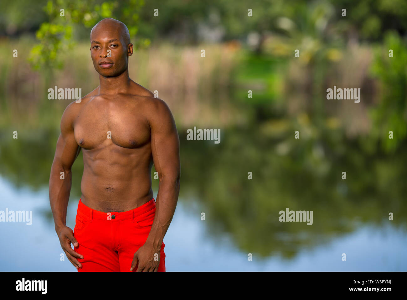 Color photo of a handsome young man posing shirtless in the park. Lit with off camera flash - Stock Image