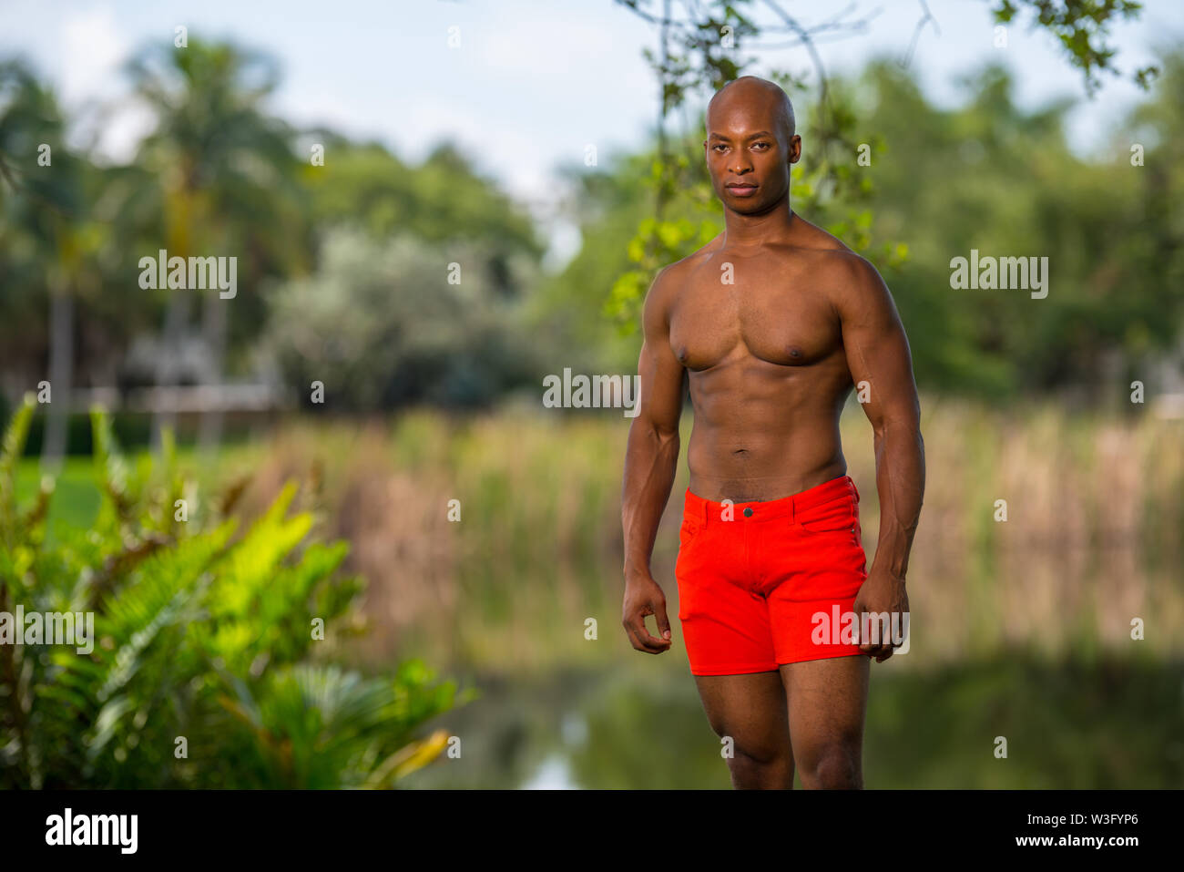 Attractive young fitness model posing shirtless in the park. Image lit with off camera flash - Stock Image