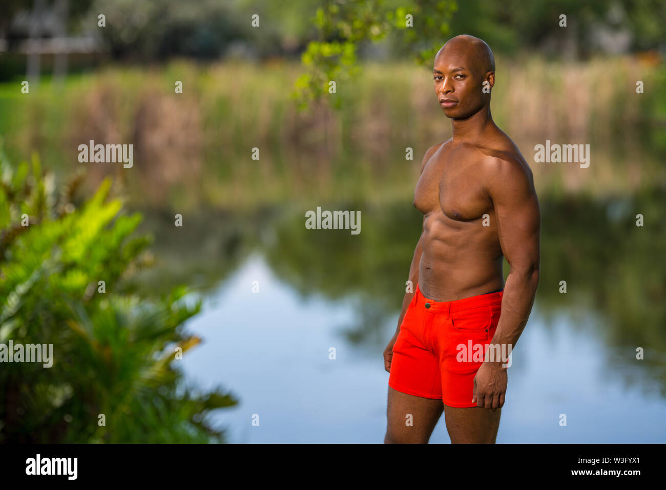 Shirtless man posing in the park. Image lit with flash - Stock Image