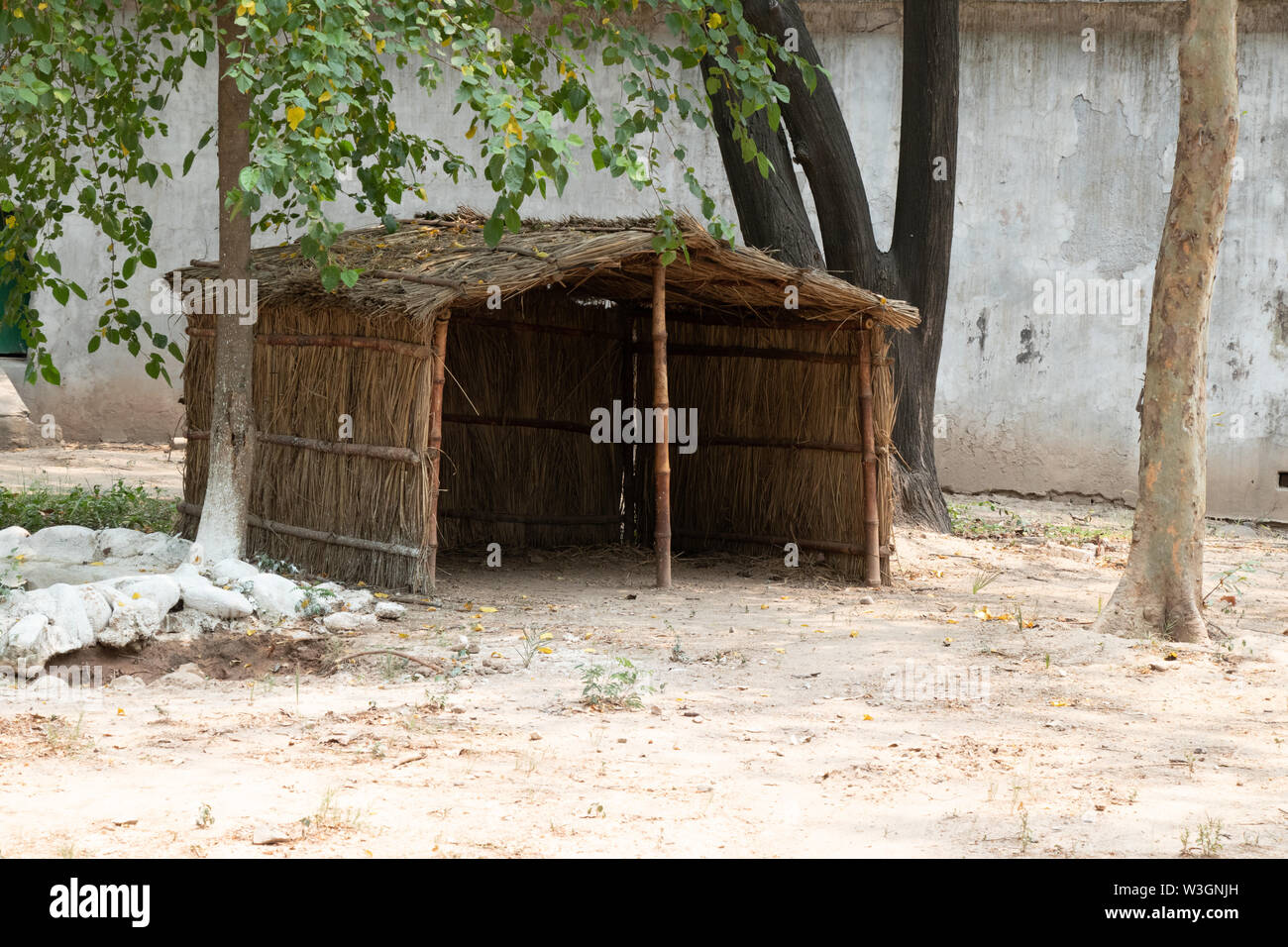 Wood grass Hut in Zoo,  used by animals for shelter. - Stock Image