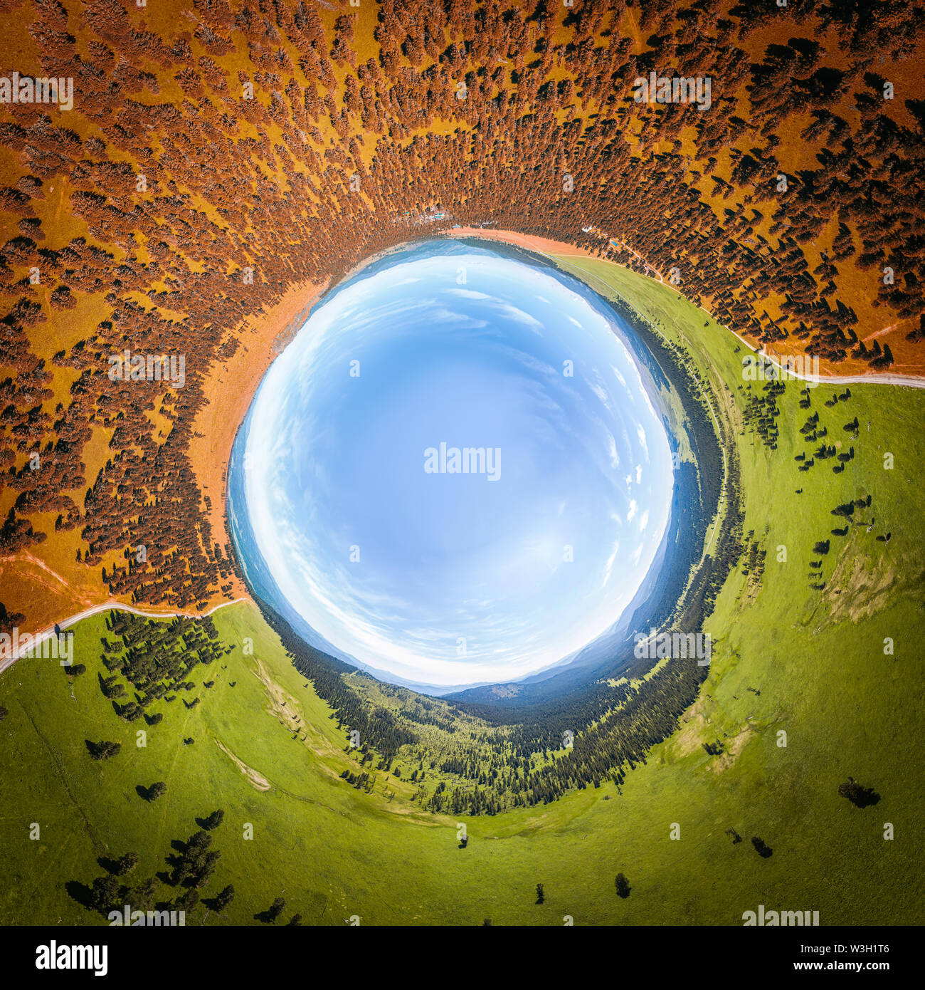 Helicopter drone shot. A view from above of  a green and orange  forest and a large field on a warm, sunny summer day.  Panoramic city 360  shot from - Stock Image