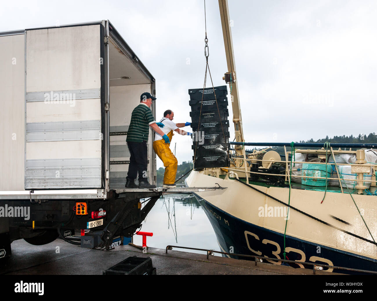 Crosshaven, Cork, Ireland. 16th July, 2019. Lorry driver, Gerry McGrath and trawler Buddy M crew member Roger Murphy begin to unload her catch of Haddock and Whiting on the quayside in Crosshaven, Co. Cork, Ireland. Credit: David Creedon/Alamy Live News - Stock Image