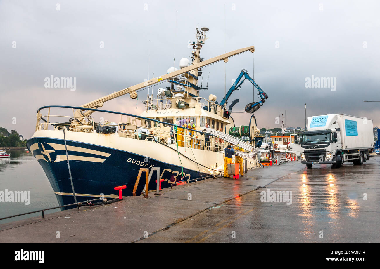Crosshaven, Cork, Ireland. 16th July, 2019. Crew of the trawler Buddy M putting out the gangway after docking at the quayside in Crosshaven, Co. Cork, while a lorry arrives to pick up with catch of Haddock and Whiting. Credit: David Creedon/Alamy Live News - Stock Image