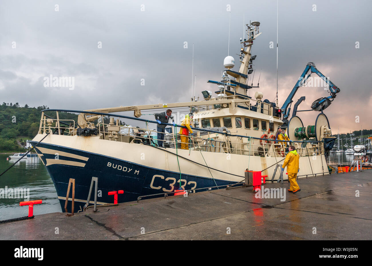 Crosshaven, Cork, Ireland. 16th July, 2019. Trawler Buddy M tying up at the quayside in Crosshaven, Co. Cork after returning from the Celtic Sea with her catch of Haddock and Whiting. Credit: David Creedon/Alamy Live News - Stock Image