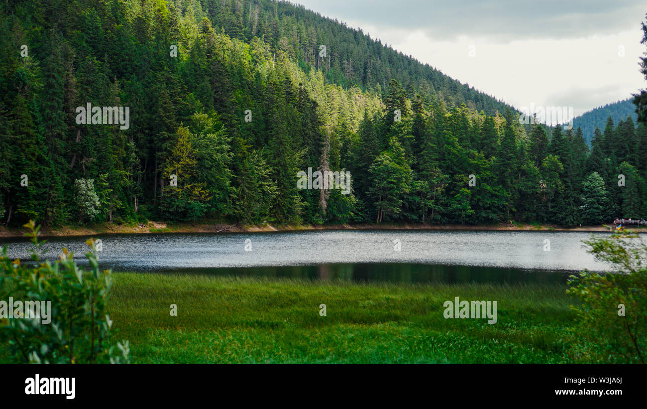 landscape with mountains, forest and a river in front. beautiful scenery nature - Stock Image
