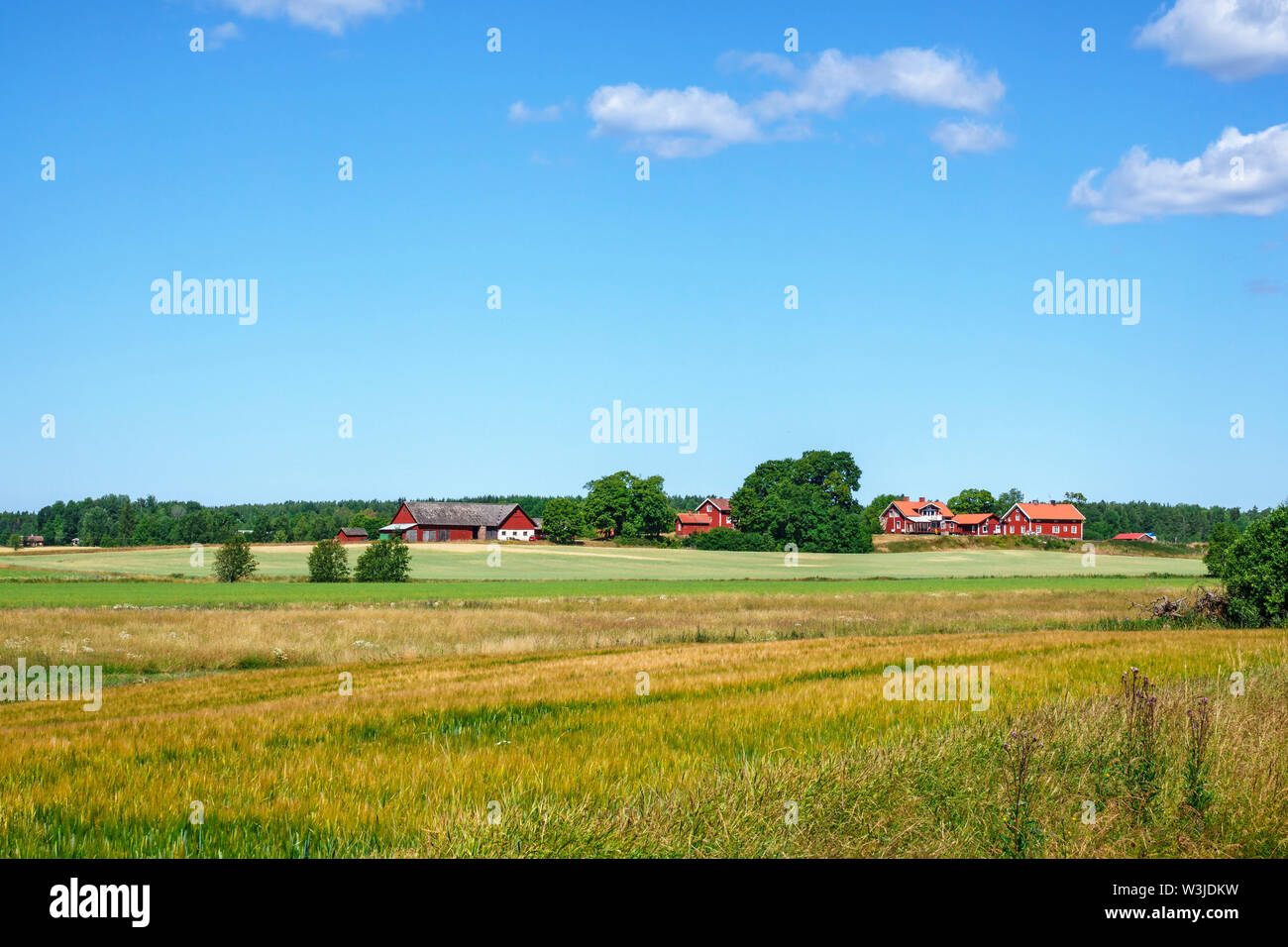 Summer landscape with farms and fields Stock Photo