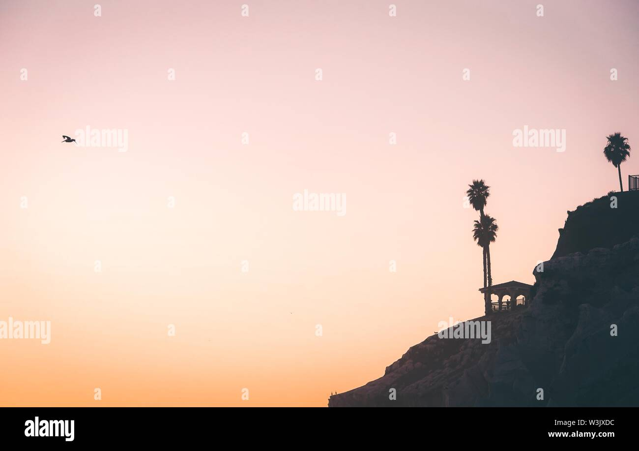 A  silhouette of a cliff at sunset whit a pelican flying in the distance with space for text - Stock Image