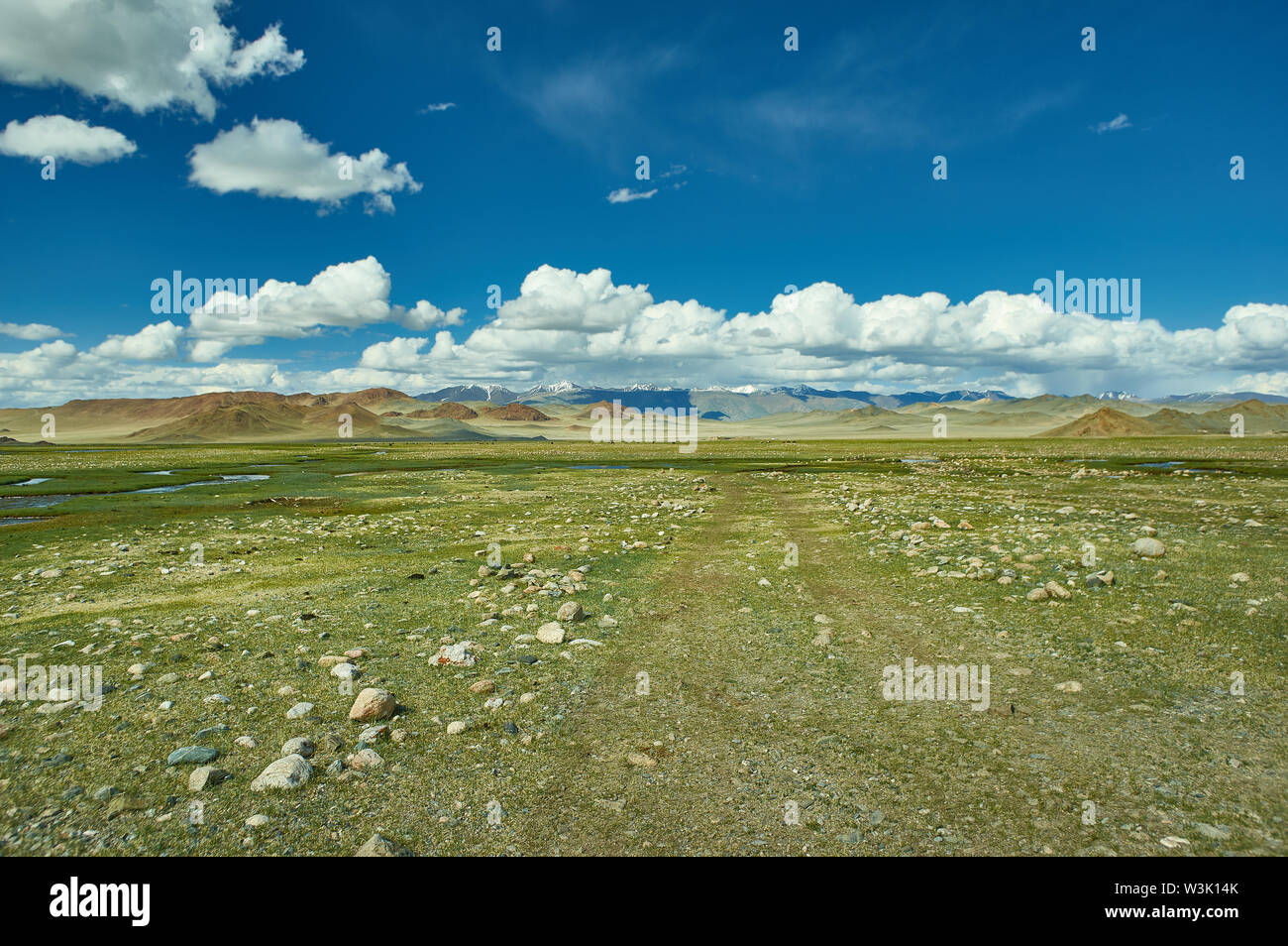 Mongolian Altai.  Scenic valley on the background of the snowcapped mountains. - Stock Image