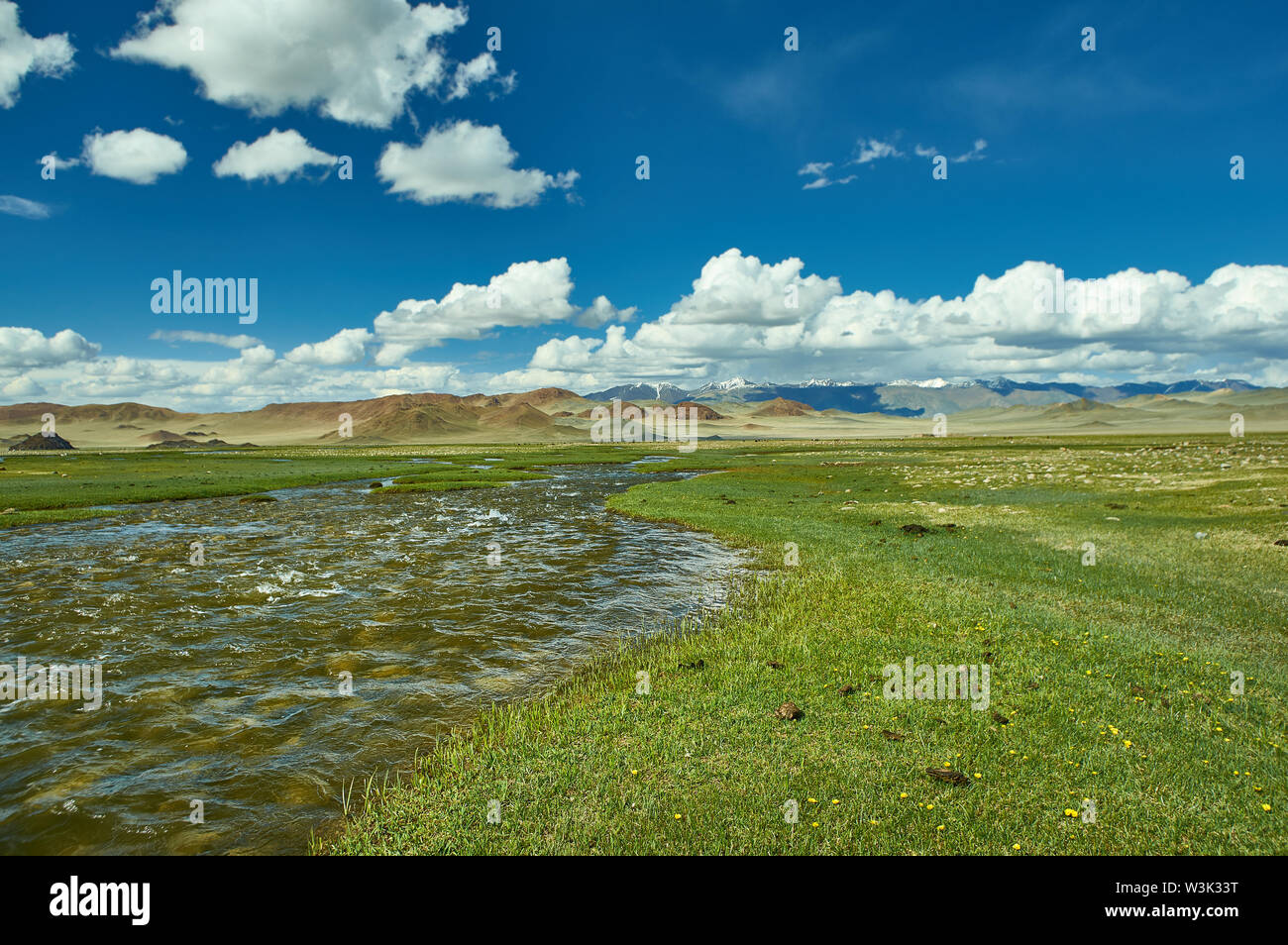 Mongolian Altai.  Current mountain stream, Scenic valley on the background of the snowcapped mountains. - Stock Image