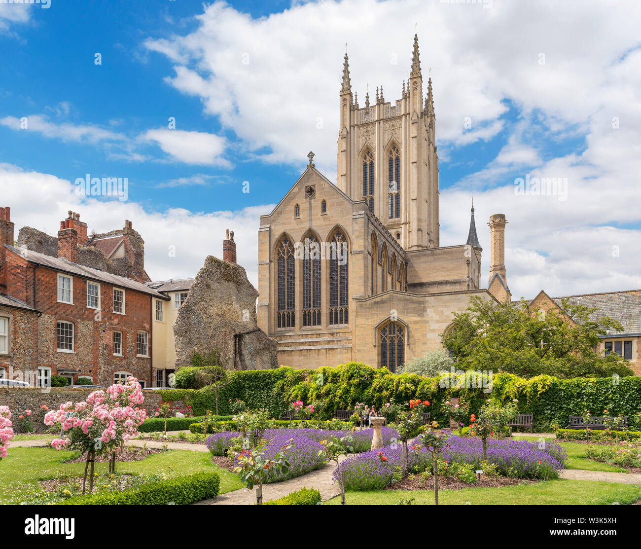 St Edmundsbury Cathedral from the Abbey Gardens, Bury St Edmunds, Suffolk, England, UK - Stock Image