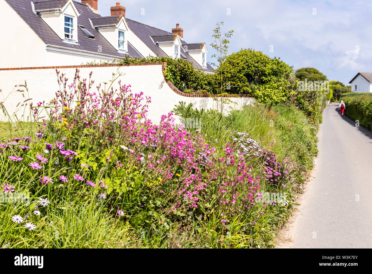 "A display of flowers in  a ""Ruette Tranquille"",  a Quiet Lane near Petit Bot, Guernsey, Channel Islands UK Stock Photo"