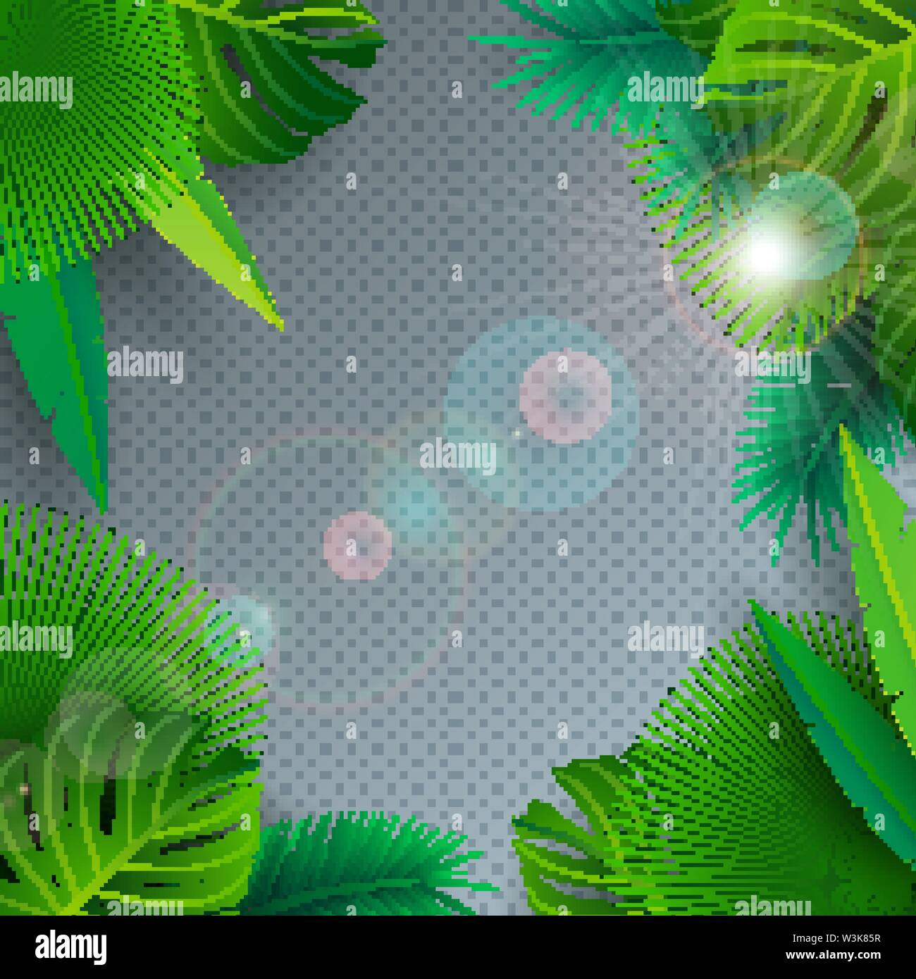 Vector Summer Illustration with Tropical Palm Leaves on Transparent Background. Exotic Plants and Sunlight for Holiday Banner, Flyer, Invitation - Stock Image