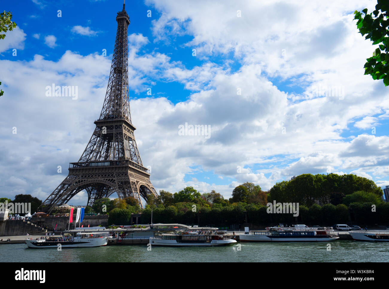 Eiffel Tower and Pont dIena with tree, Paris France, retro toned - Stock Image