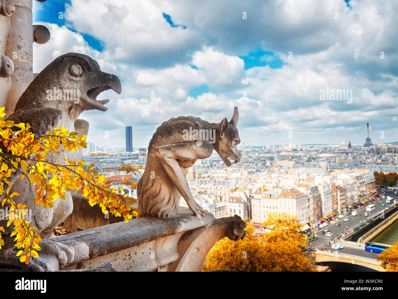 Gargoyle of Paris on Notre Dame Cathedral church and Paris cityscapeat fall, France - Stock Image