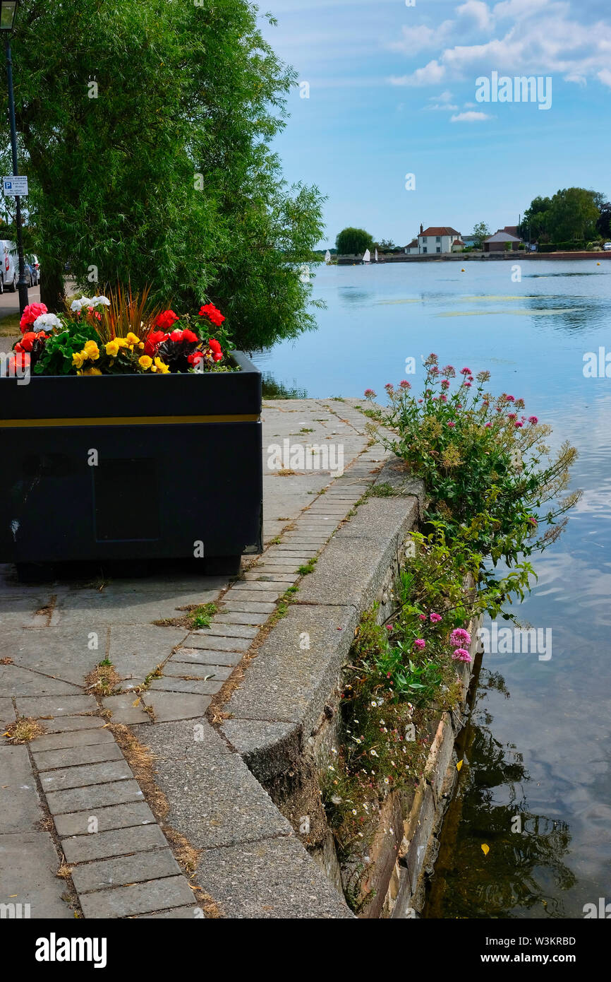 Large flower filled planter and Red Valerian at the edge of Emsworth Mill Pond, Hampshire, UK. - Stock Image