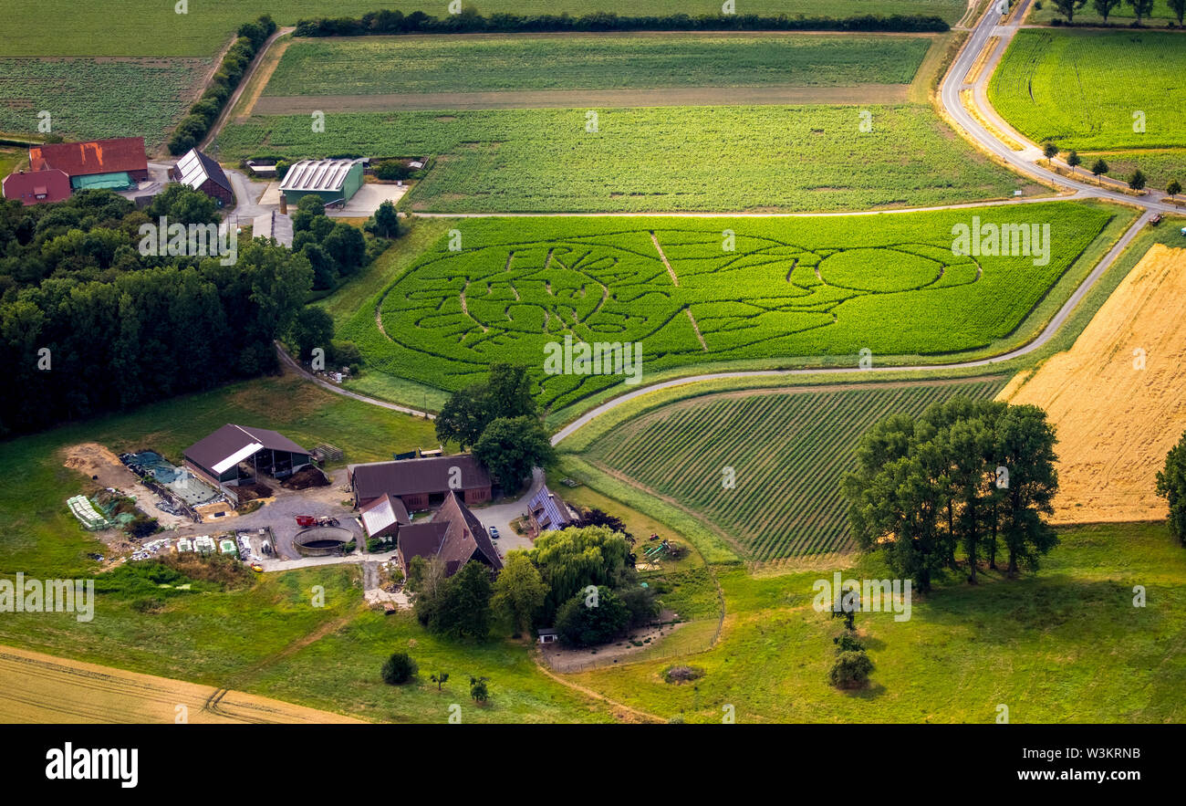 Aerial view of the FRIDAYS FOR FUTURE emblem with climate activist Greta Thunberg as a corn maze on a field in Cappenberg, Selm, Ruhrgebiet, North Rhi - Stock Image