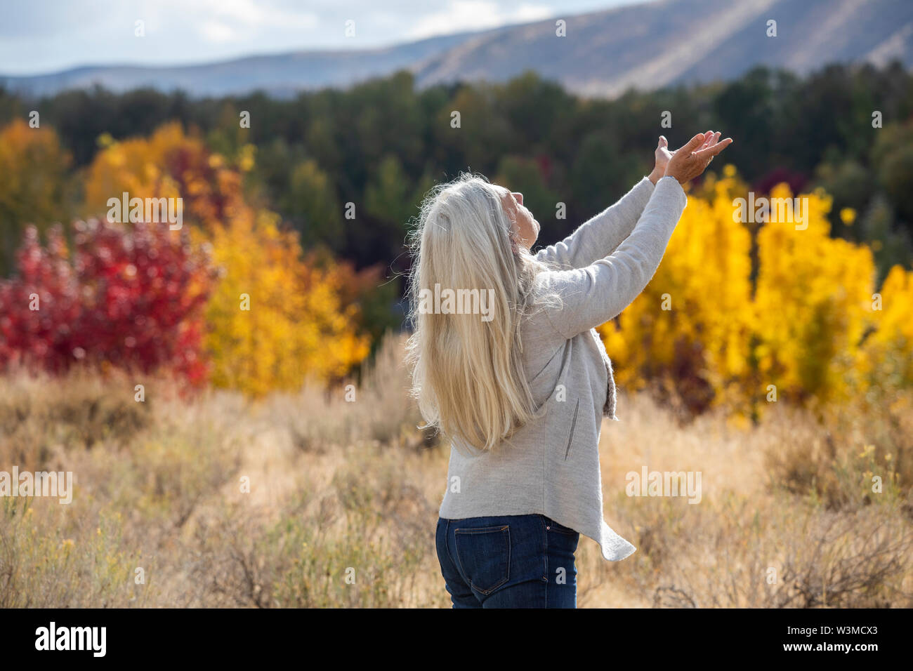 Mature woman with her arms raised by autumn forest - Stock Image
