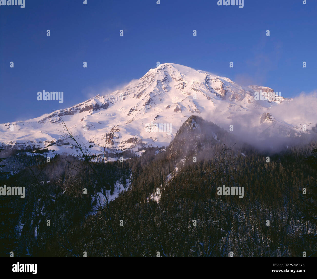 USA, Washington, Mt. Rainier National Park, Soft sunset light on snowy south side of Mt. Rainier in winter with swirling fog. Stock Photo