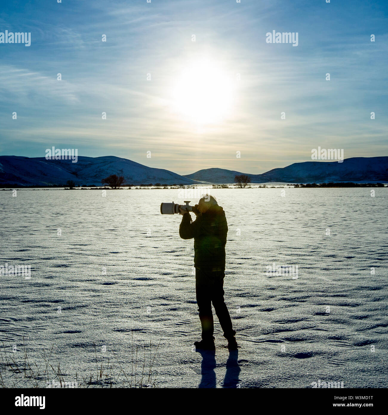 Senior man photographing in snow field in Picabo, Idaho - Stock Image