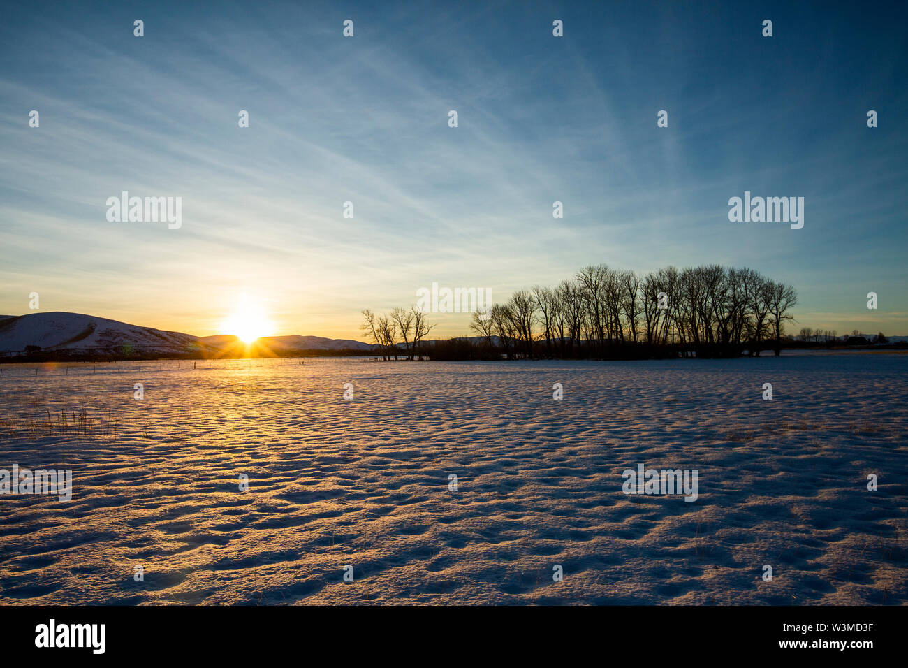 Snow field at sunset in Picabo, Idaho - Stock Image