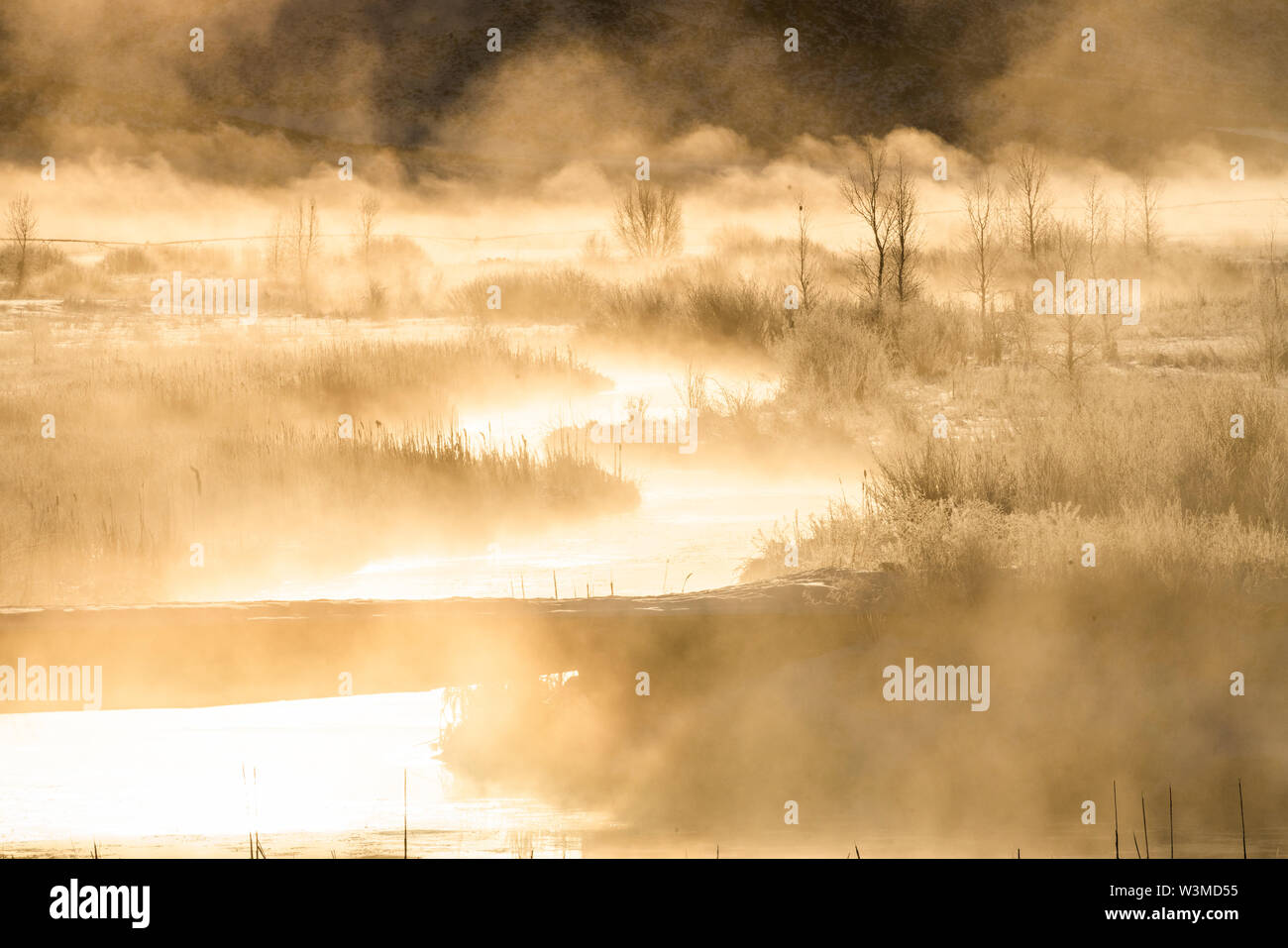 River at sunrise in Picabo, Idaho - Stock Image