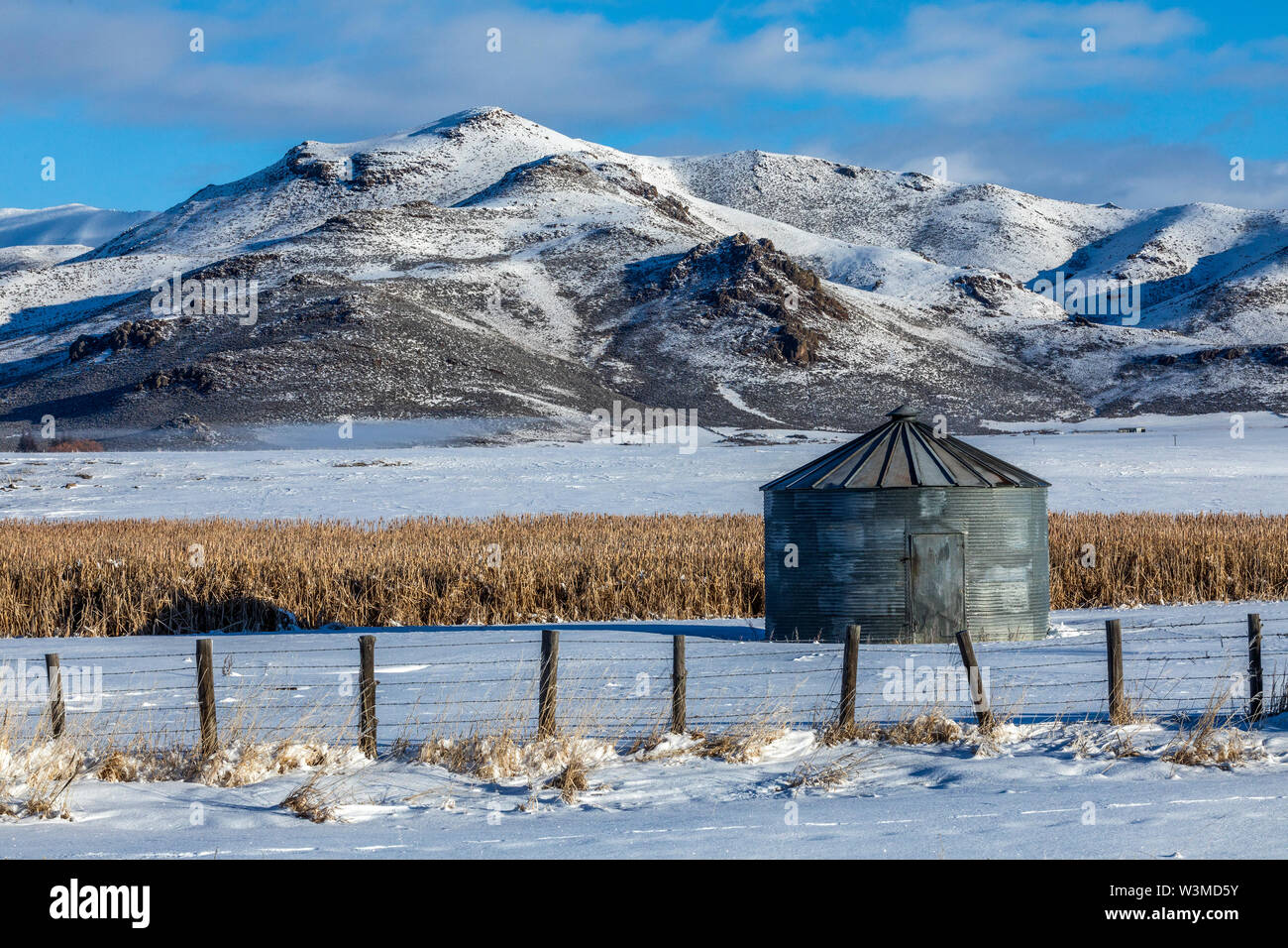 Grain silo in field by mountain during winter - Stock Image