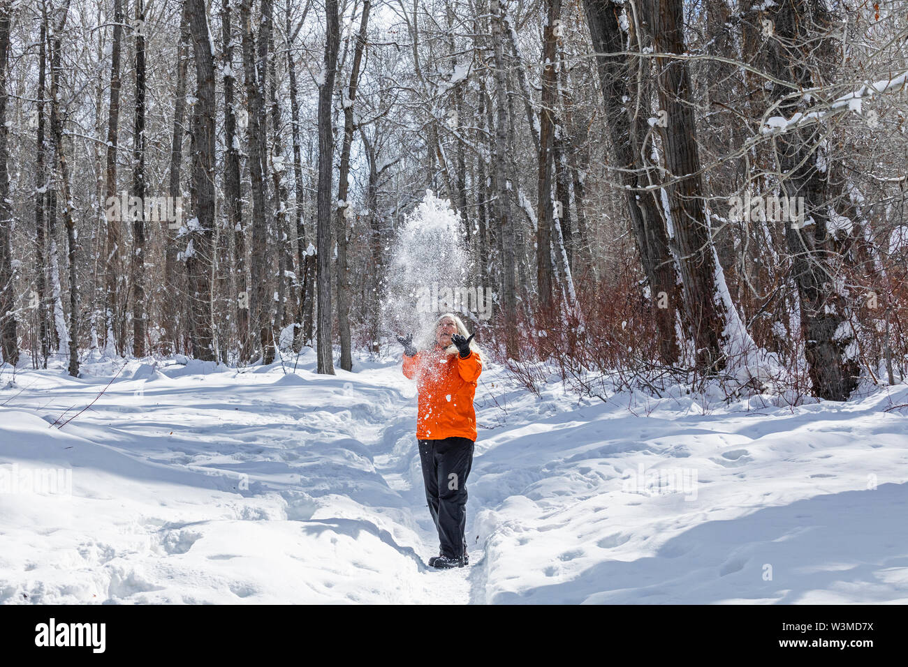 Mature woman wearing orange coat throwing snow by bare trees - Stock Image