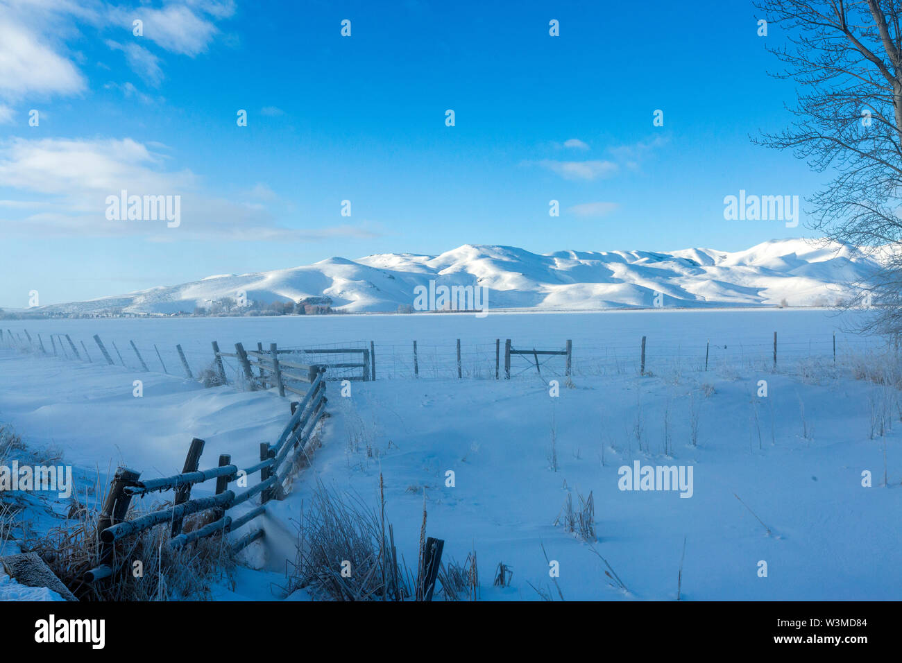 Fence and snow field during winter in Picabo, Idaho - Stock Image
