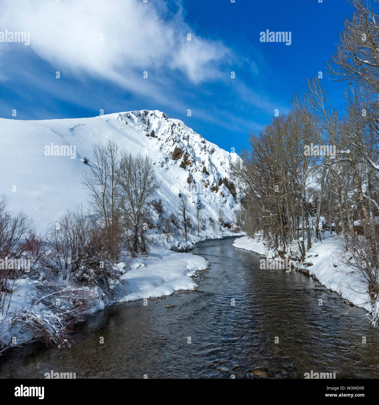 River by bare trees in snow in Sun Valley, Idaho, USA - Stock Image