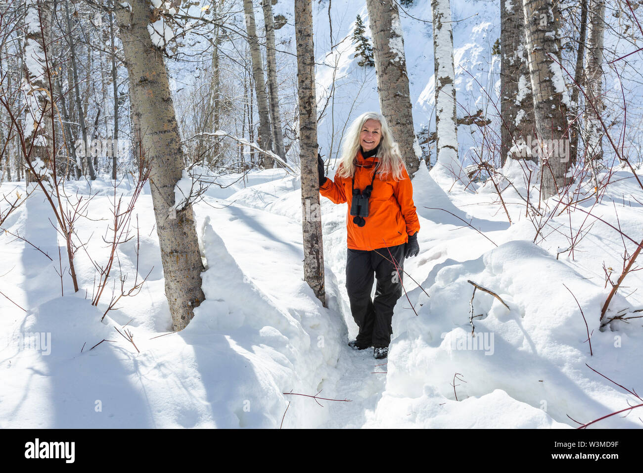 Mature woman wearing orange coat by bare trees in snow - Stock Image