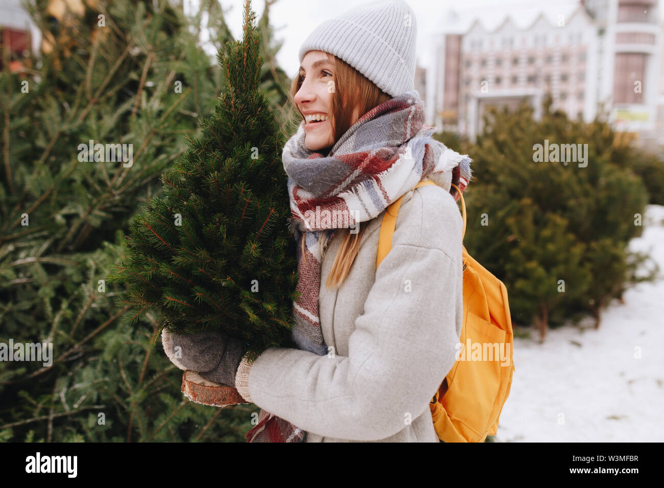 Young woman carrying small Christmas tree - Stock Image