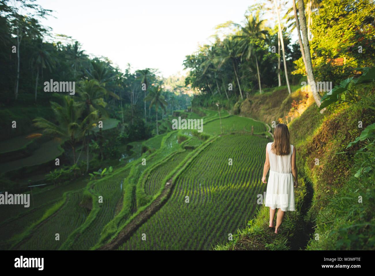 Woman wearing white dress on terraced rice paddies in Bali, Indonesia - Stock Image