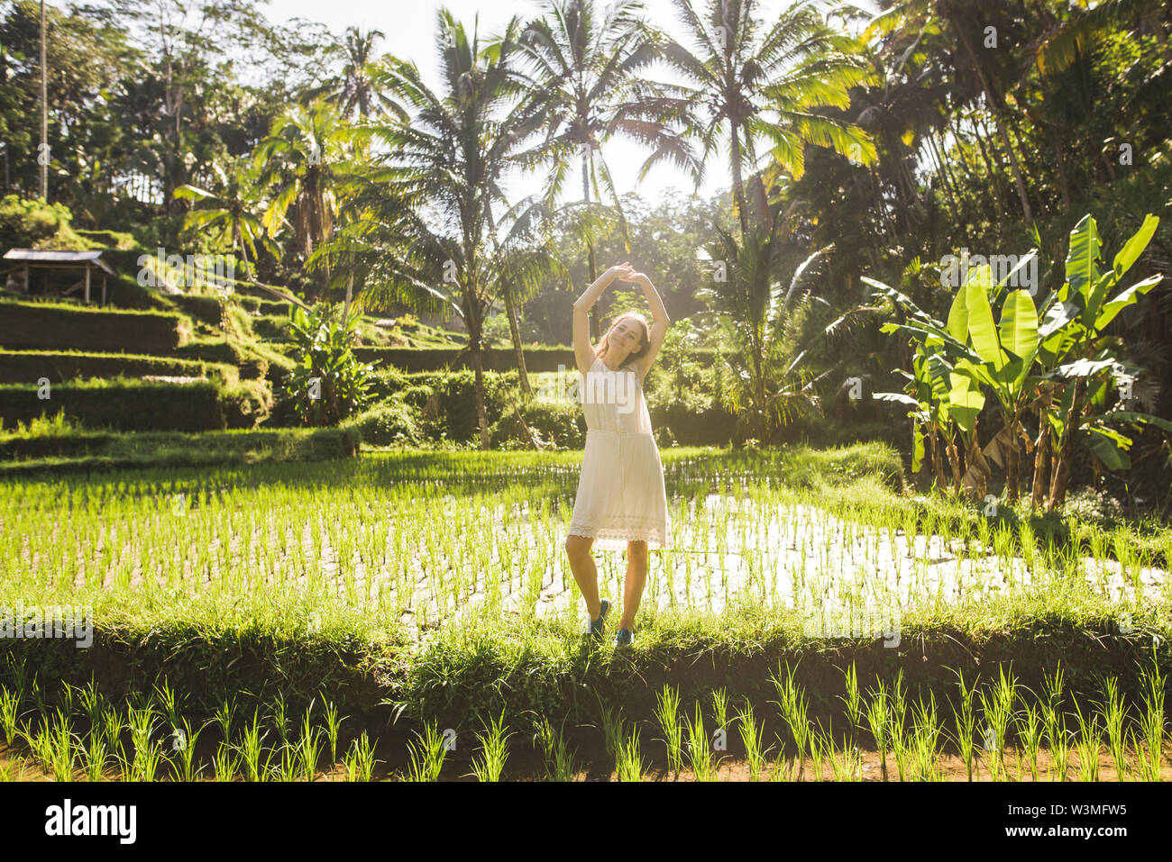 Young woman wearing white dress in rice paddy in Bali, Indonesia - Stock Image