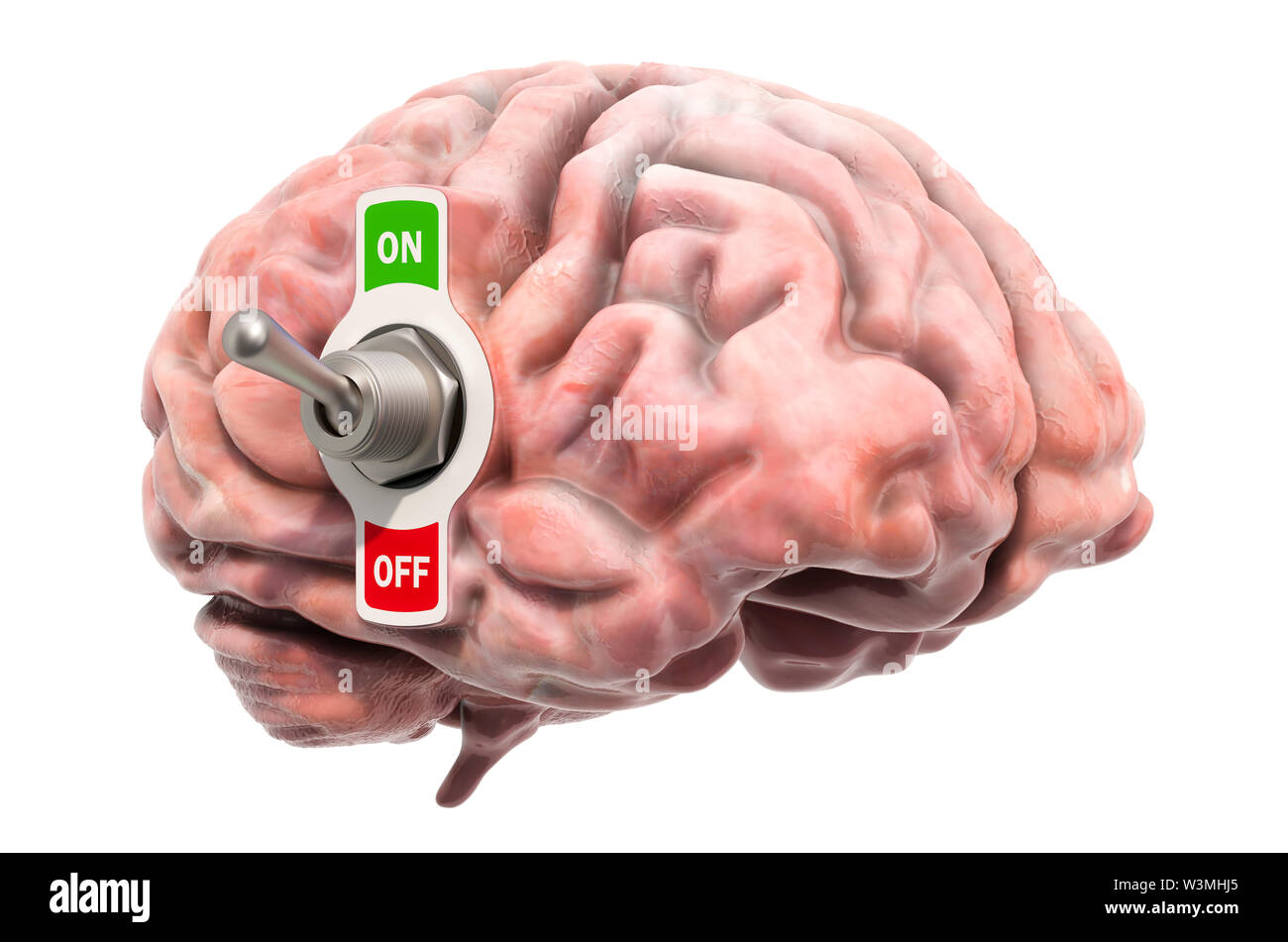Brain with toggle switch on, 3D rendering isolated on white background - Stock Image
